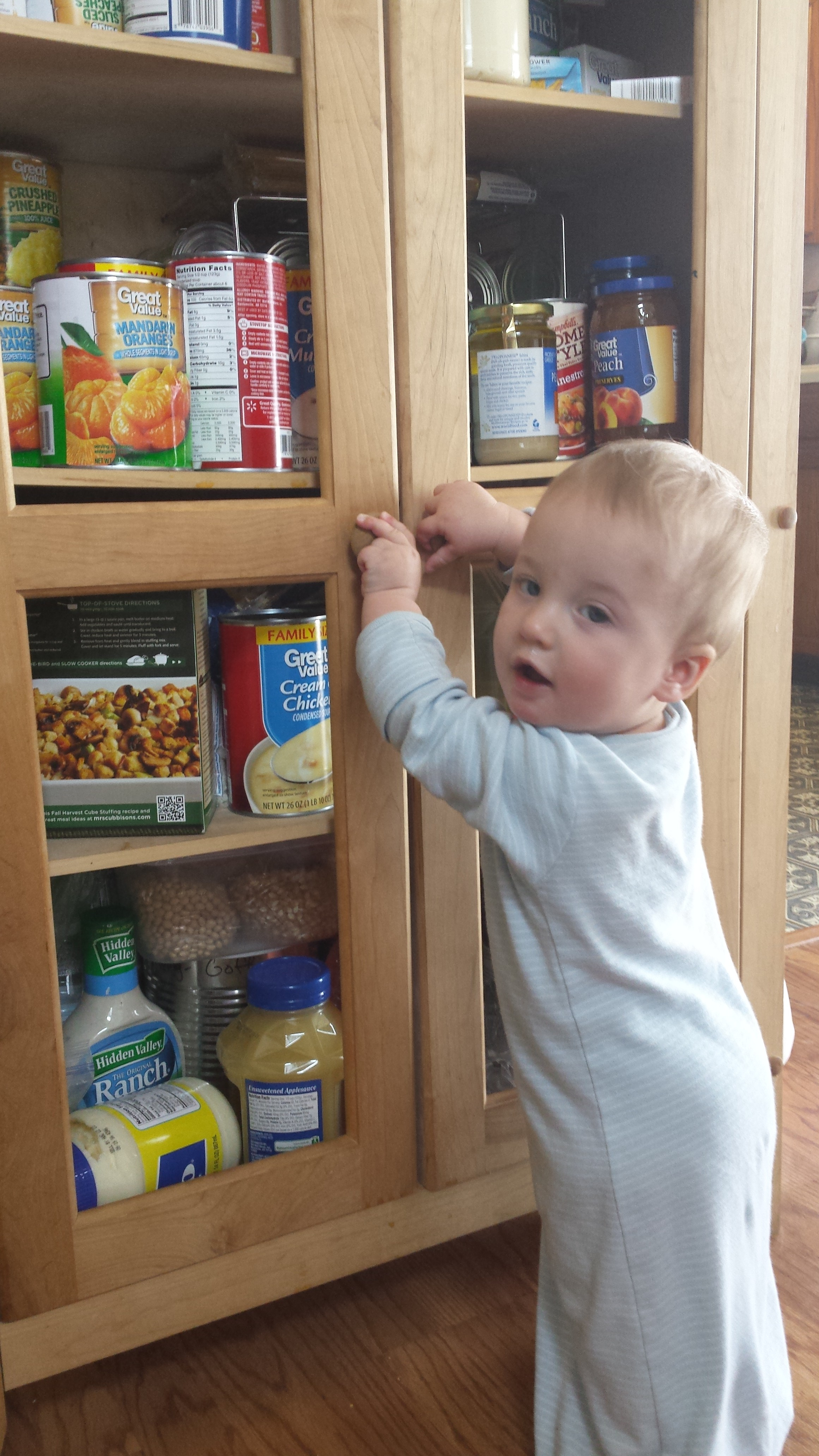 Pip Helping Rearrange the Pantry